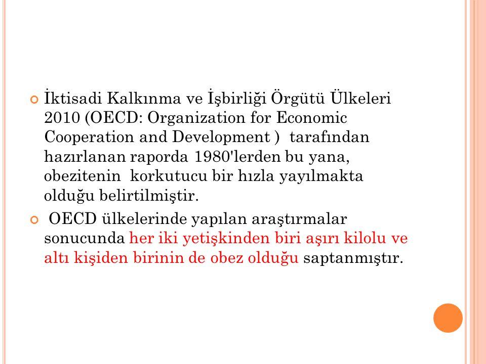 İktisadi Kalkınma ve İşbirliği Örgütü Ülkeleri 2010 (OECD: Organization for Economic Cooperation and Development ) tarafından hazırlanan raporda 1980'