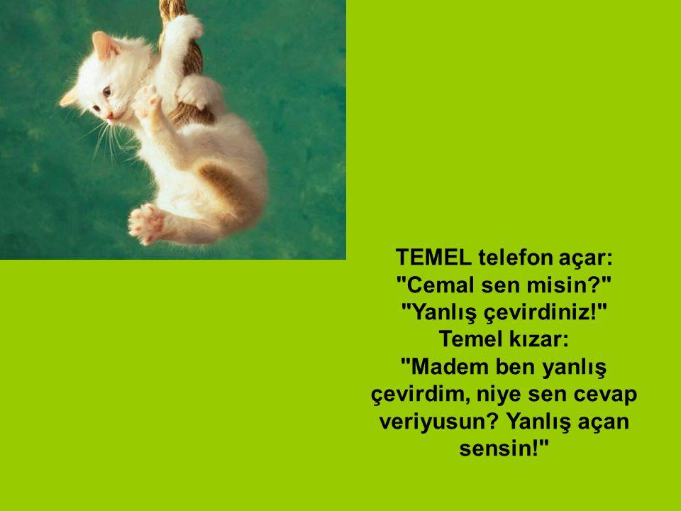 TEMEL telefon açar: