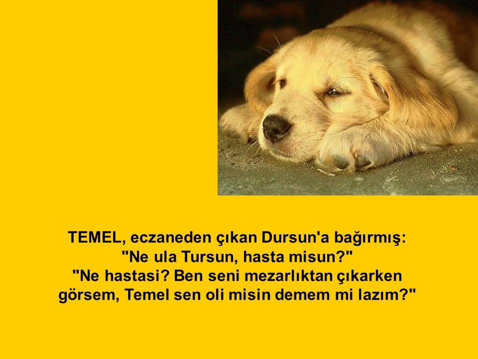 TEMEL, eczaneden çıkan Dursun'a bağırmış:
