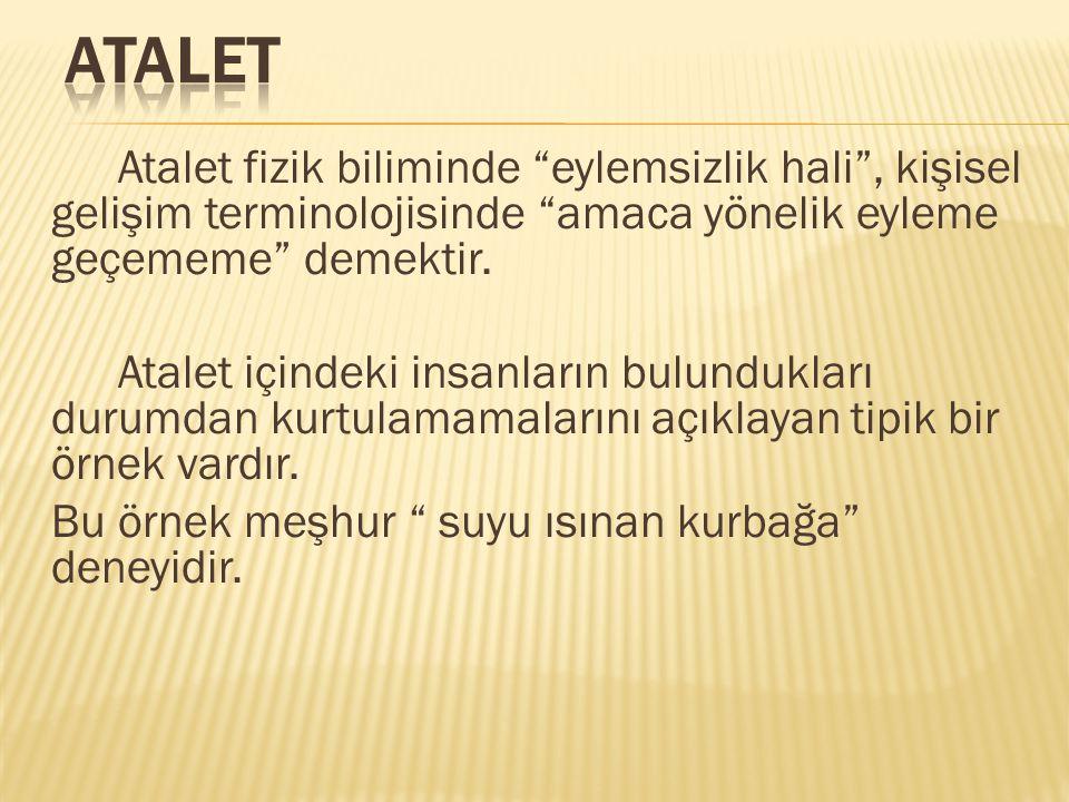 Belli başlı mazeretler: Türkiye'de yaşamak, anne babanın eğitimsiz olması, fırsat eşitsizliği,bozuk sistem veya sistemsizlik, elinden tutanın olmaması