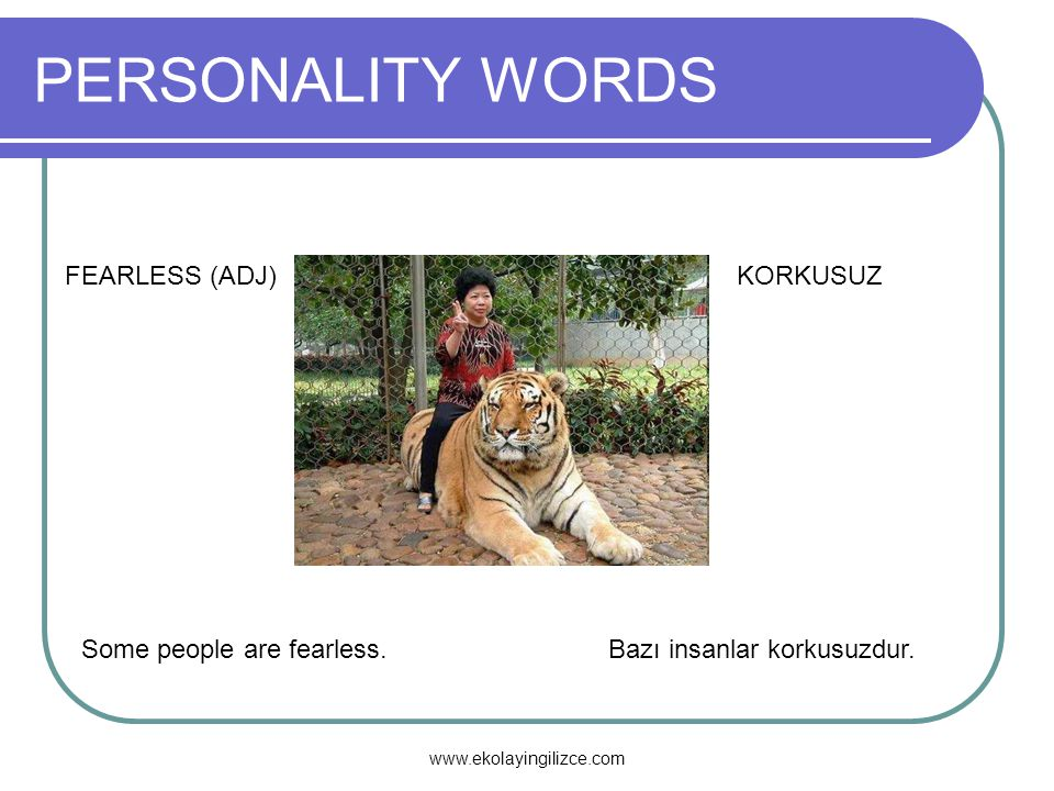 PERSONALITY WORDS FEARLESS (ADJ)KORKUSUZ Some people are fearless.Bazı insanlar korkusuzdur. www.ekolayingilizce.com