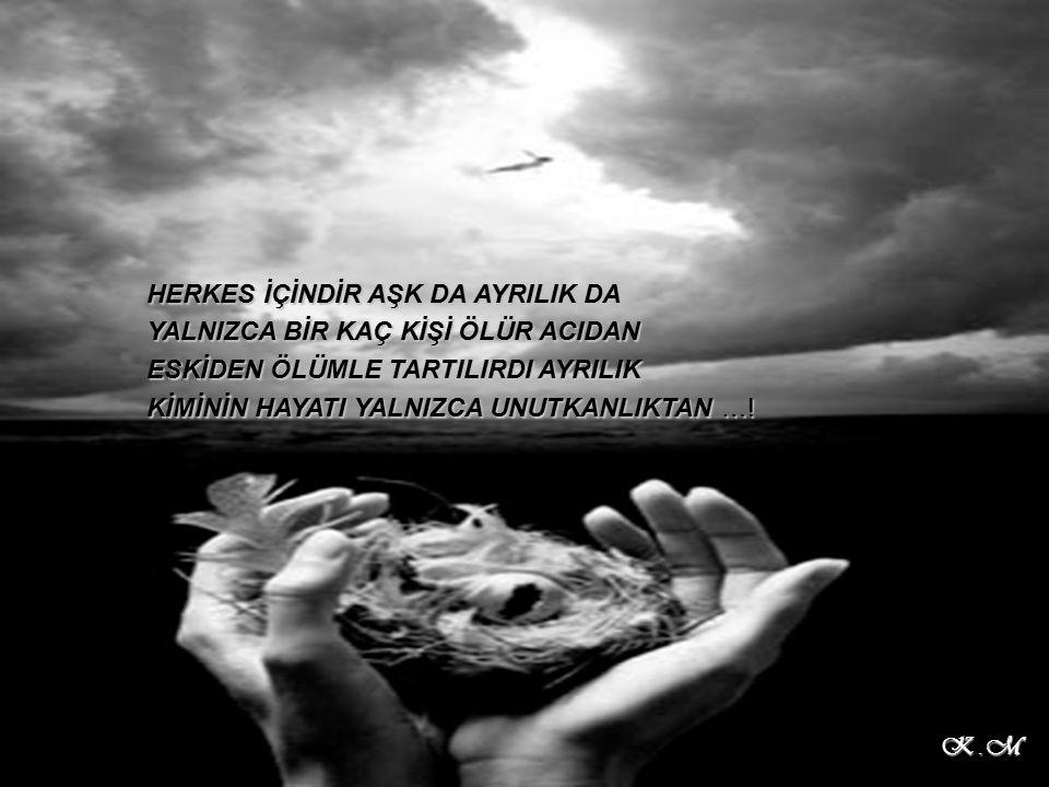 HERKES İÇİNDİR AŞK DA AYRILIK DA YALNIZCA BİR KAÇ KİŞİ ÖLÜR ACIDAN ESKİDEN ÖLÜMLE TARTILIRDI AYRILIK KİMİNİN HAYATI YALNIZCA UNUTKANLIKTAN ….