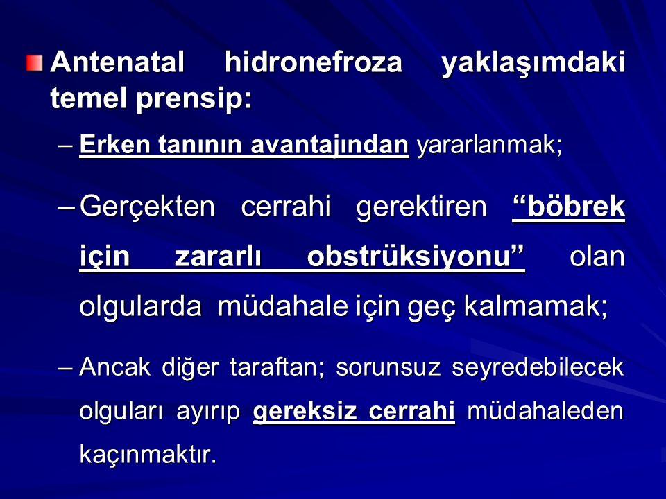 32 yenidoğan Unilateral G3 HN; SBF >%40 Cerrahi vs İzlem –Gözlem grubunda %25 cerrahi gerekti –Başlangıçta cerrahiye giden grupta fonksiyon kaybı olmadı.