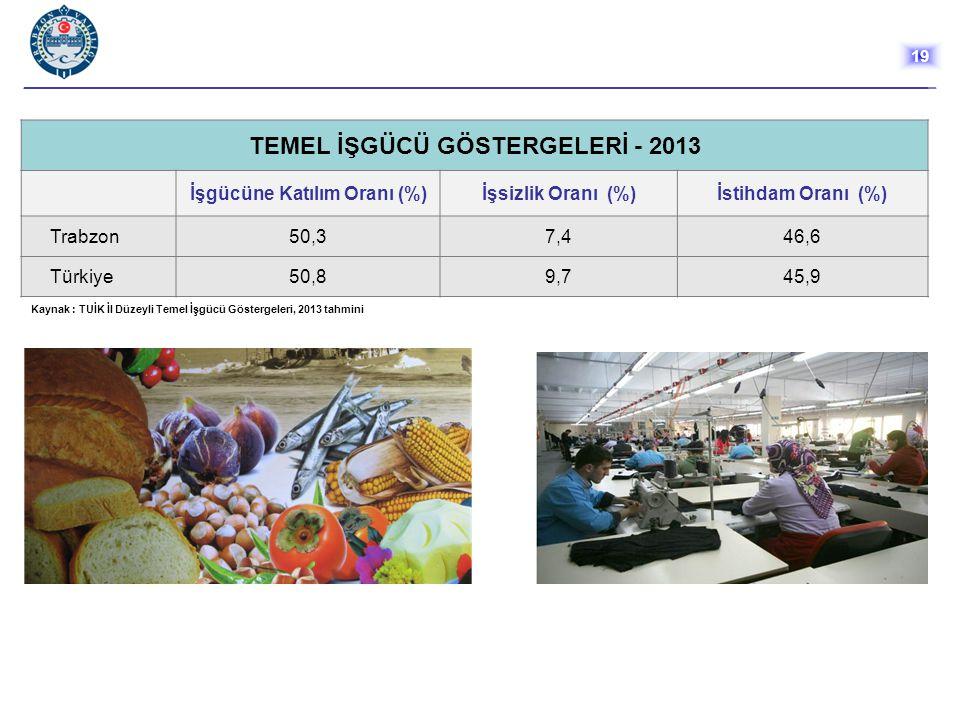 TEMEL İŞGÜCÜ GÖSTERGELERİ - 2013 İşgücüne Katılım Oranı (%)İşsizlik Oranı (%)İstihdam Oranı (%) Trabzon50,37,446,6 Türkiye50,89,745,9 Kaynak : TUİK İl