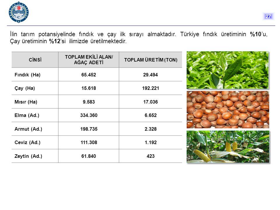 İlin tarım potansiyelinde fındık ve çay ilk sırayı almaktadır. Türkiye fındık üretiminin %10'u, Çay üretiminin %12'si ilimizde üretilmektedir. 27 CİNS