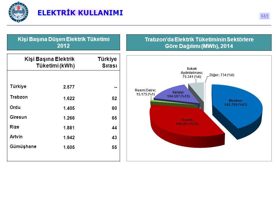 ELEKTRİK KULLANIMI Kişi Başına Düşen Elektrik Tüketimi 2012 Kişi Başına Elektrik Tüketimi (kWh) Türkiye Sırası Türkiye 2.577 -- Trabzon 1.622 52 Ordu