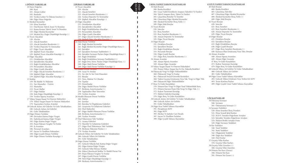 BİLANÇO II-DURAN VARLIKLAR 24-MALİ DURAN VARLIKLAR 240- Bağlı Menkul Kıymetler 242- İştirakler 245- Bağlı Ortaklıklar