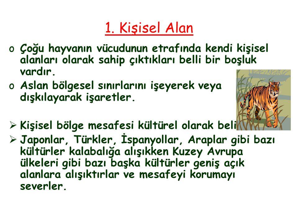 KİŞİSEL YETKİNLİKLER 1.