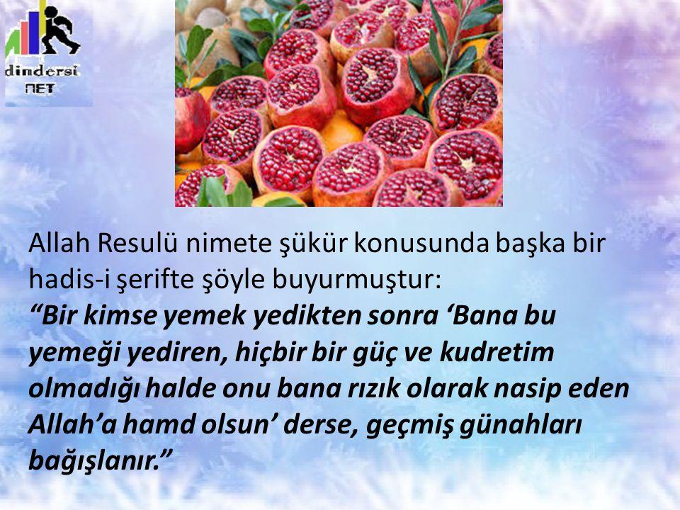 """Allah Resulü nimete şükür konusunda başka bir hadis-i şerifte şöyle buyurmuştur: """"Bir kimse yemek yedikten sonra 'Bana bu yemeği yediren, hiçbir bir g"""