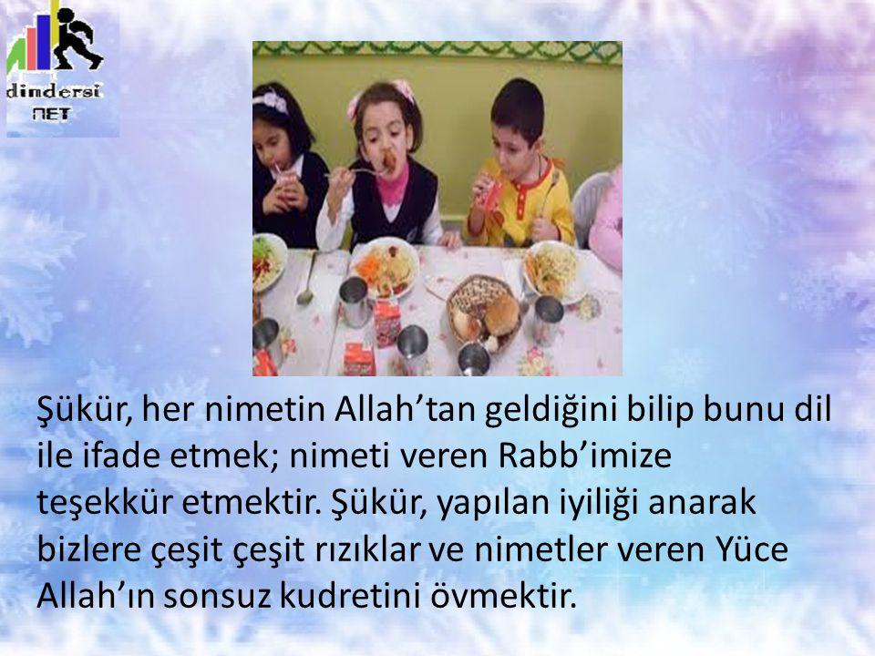 Şükür, her nimetin Allah'tan geldiğini bilip bunu dil ile ifade etmek; nimeti veren Rabb'imize teşekkür etmektir. Şükür, yapılan iyiliği anarak bizler