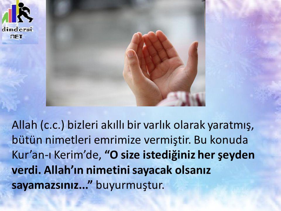 """Allah (c.c.) bizleri akıllı bir varlık olarak yaratmış, bütün nimetleri emrimize vermiştir. Bu konuda Kur'an-ı Kerim'de, """"O size istediğiniz her şeyde"""