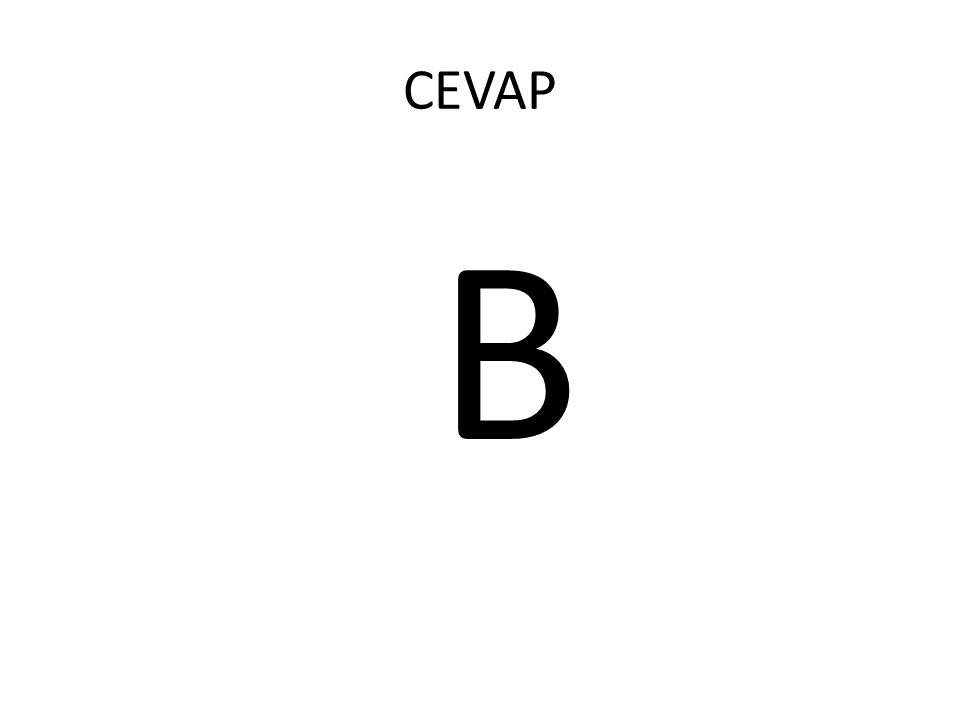 CEVAP B