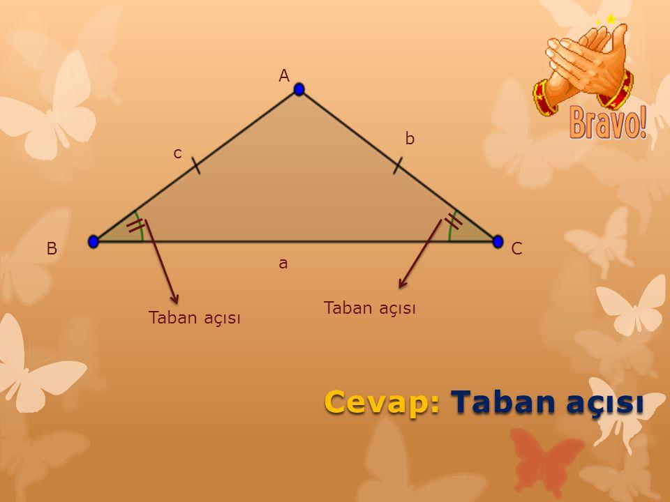 SORU: İkiz kenar üçgende hangi açılar birbirine eşittir?