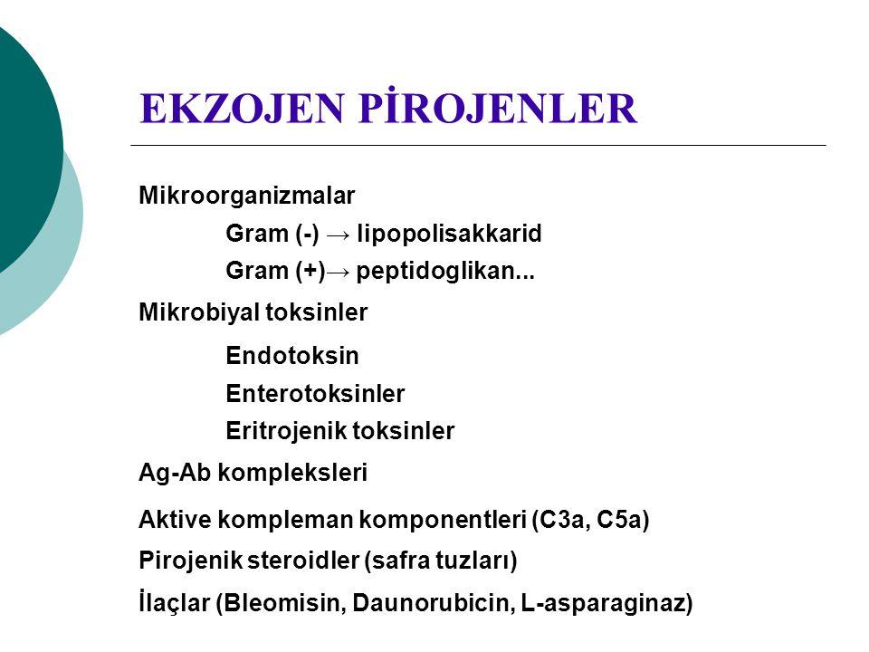 EKZOJEN PİROJENLER Mikroorganizmalar Gram (-) → lipopolisakkarid Gram (+)→ peptidoglikan... Mikrobiyal toksinler Endotoksin Enterotoksinler Eritrojeni