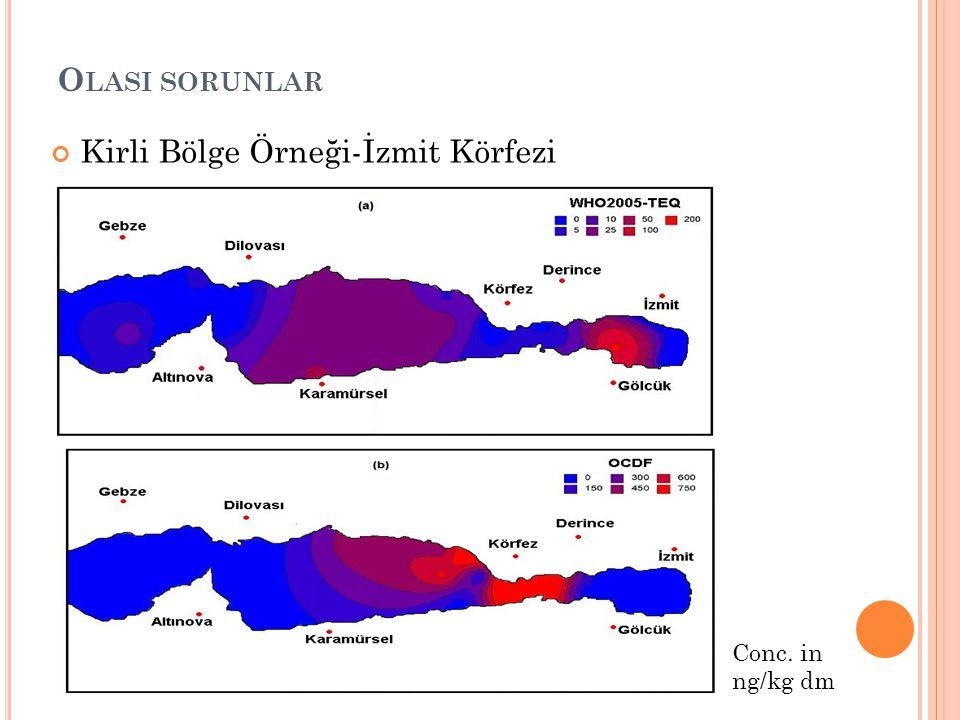 Kirli Bölge Örneği-İzmit Körfezi Sediment PCDD/F kons.