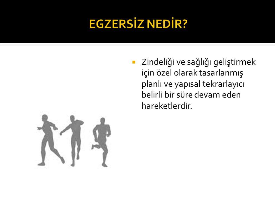  Arslan C., Gökhan İ., Aysan H.