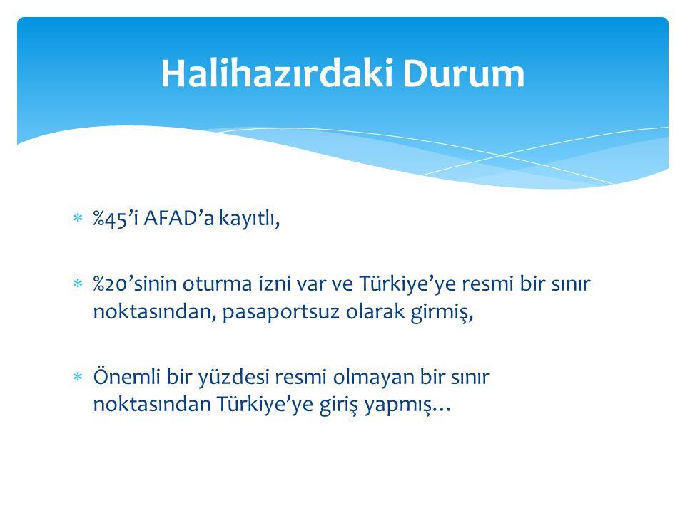  %45'i AFAD'a kayıtlı,  %20'sinin oturma izni var ve Türkiye'ye resmi bir sınır noktasından, pasaportsuz olarak girmiş,  Önemli bir yüzdesi resmi o