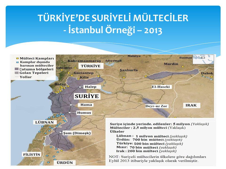 TÜRKİYE'DE SURİYELİ MÜLTECİLER - İstanbul Örneği – 2013