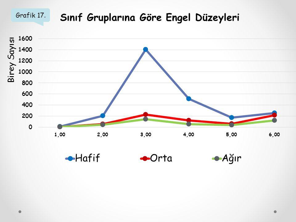 Grafik 17. Sınıf Gruplarına Göre Engel Düzeyleri Birey Sayısı