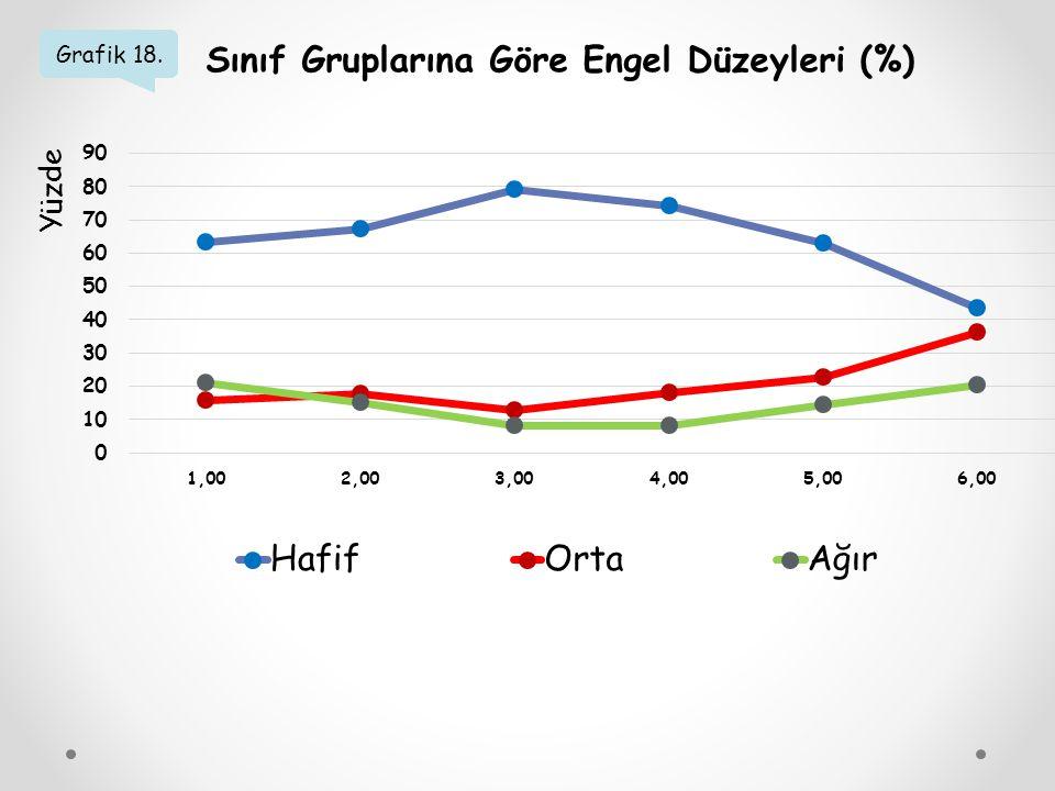 Grafik 18. Sınıf Gruplarına Göre Engel Düzeyleri (%) Yüzde
