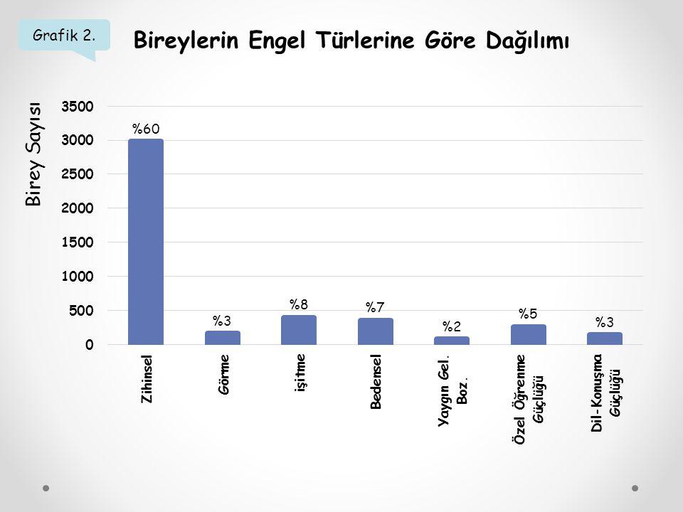 Grafik 3. Bireylerin Engel Düzeylerine Göre Dağılımı Birey Sayısı