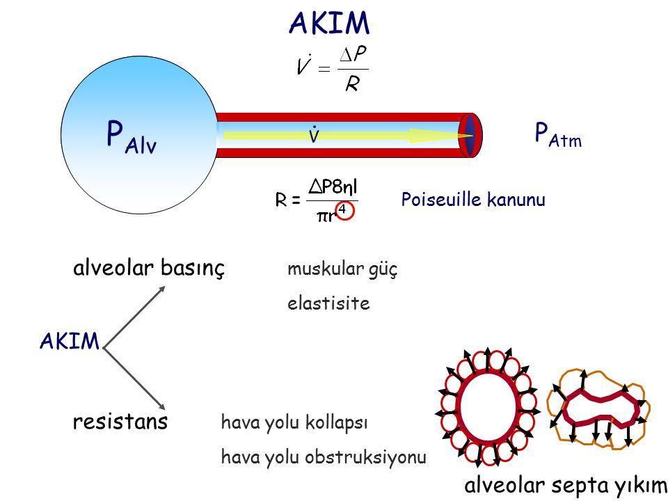AKIM P Atm P Alv V V Poiseuille kanunu alveolar basınç muskular güç elastisite : AKIM resistans hava yolu kollapsı hava yolu obstruksiyonu alveolar se