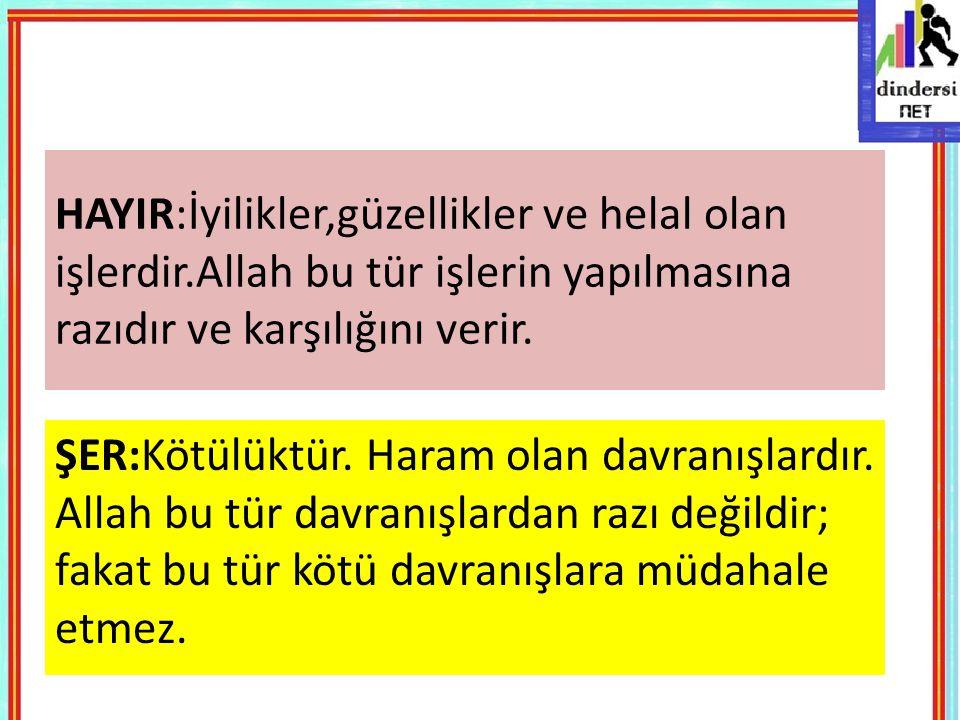 HAYIR:İyilikler,güzellikler ve helal olan işlerdir.Allah bu tür işlerin yapılmasına razıdır ve karşılığını verir. ŞER:Kötülüktür. Haram olan davranışl