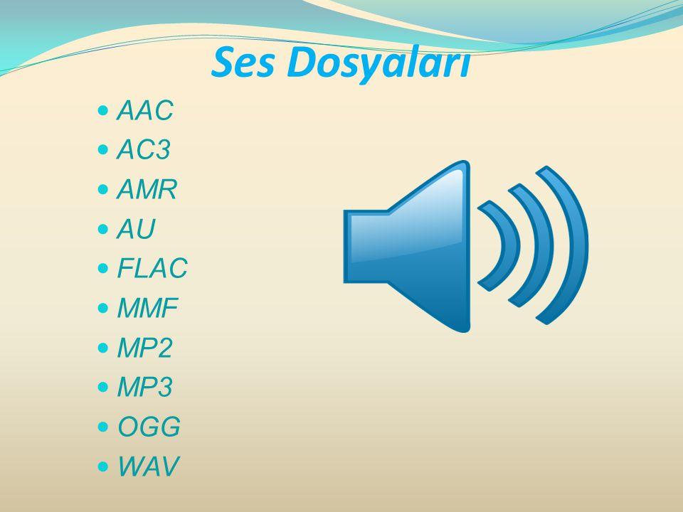 Ses Dosyaları AAC AC3 AMR AU FLAC MMF MP2 MP3 OGG WAV