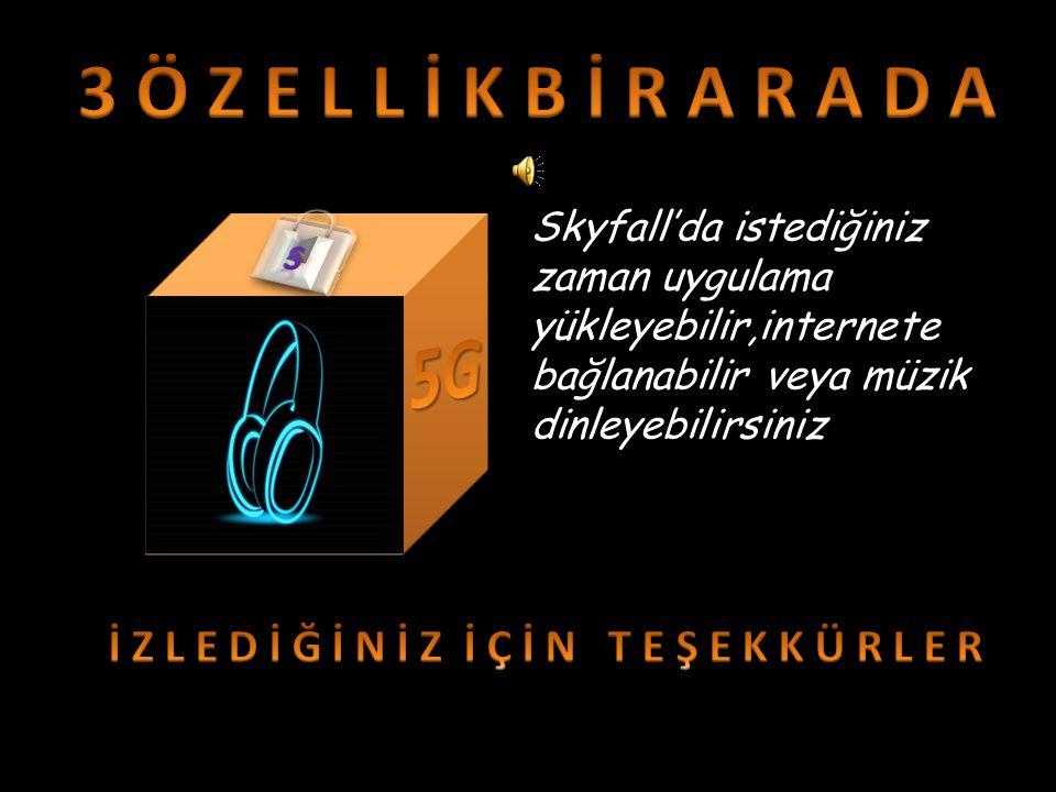 Skyfall ayrıca Türkiye'nin en iddialı takımlarından olan Fenerbahçe ile sponsorluk anlaşması için masaya oturdu.