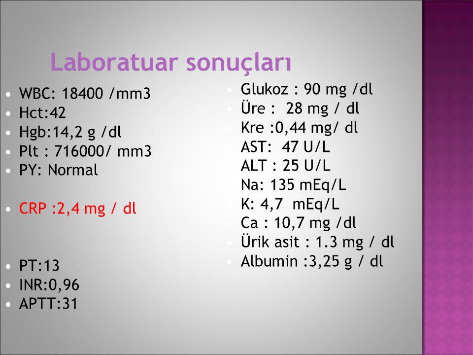 Laboratuar sonuçları Glukoz : 90 mg /dl Üre : 28 mg / dl Kre :0,44 mg/ dl AST: 47 U/L ALT : 25 U/L Na: 135 mEq/L K: 4,7 mEq/L Ca : 10,7 mg /dl Ürik as