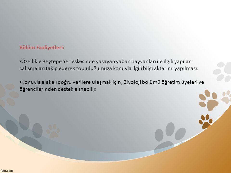 Bölüm Faaliyetleri: Özellikle Beytepe Yerleşkesinde yaşayan yaban hayvanları ile ilgili yapılan çalışmaları takip ederek topluluğumuza konuyla ilgili