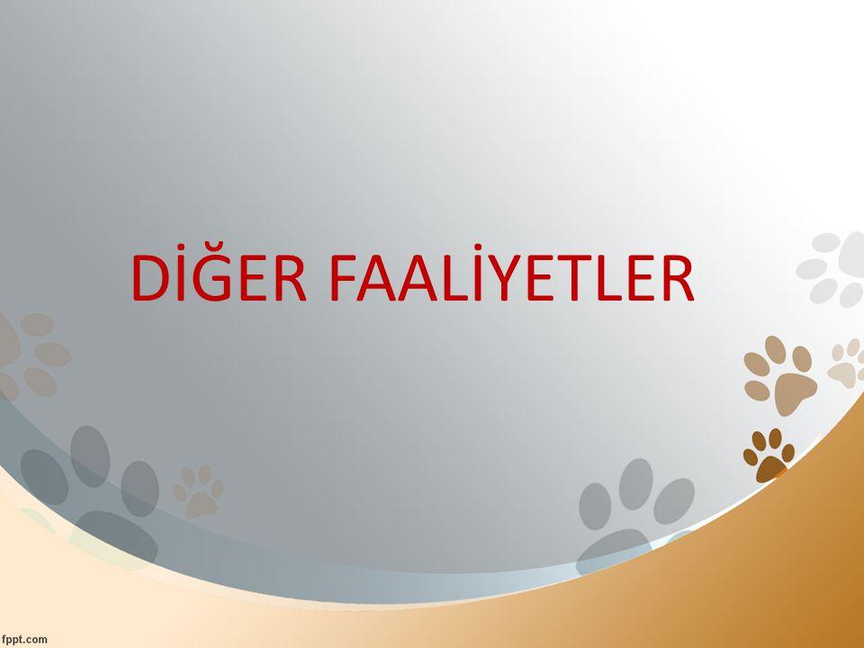 DİĞER FAALİYETLER