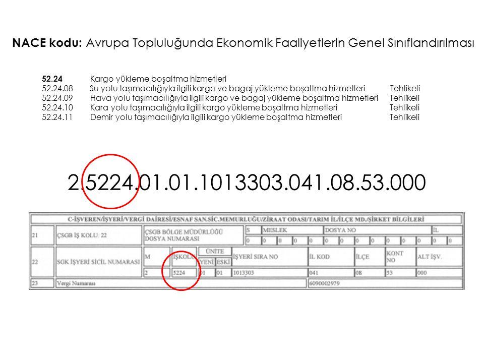 2.5224.01.01.1013303.041.08.53.000 NACE kodu: Avrupa Topluluğunda Ekonomik Faaliyetlerin Genel Sınıflandırılması 52.24 Kargo yükleme boşaltma hizmetle