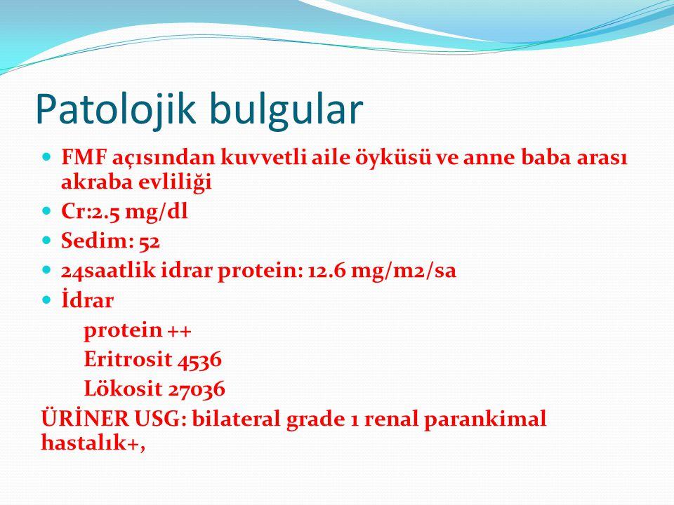 Patolojik bulgular FMF açısından kuvvetli aile öyküsü ve anne baba arası akraba evliliği Cr:2.5 mg/dl Sedim: 52 24saatlik idrar protein: 12.6 mg/m2/sa
