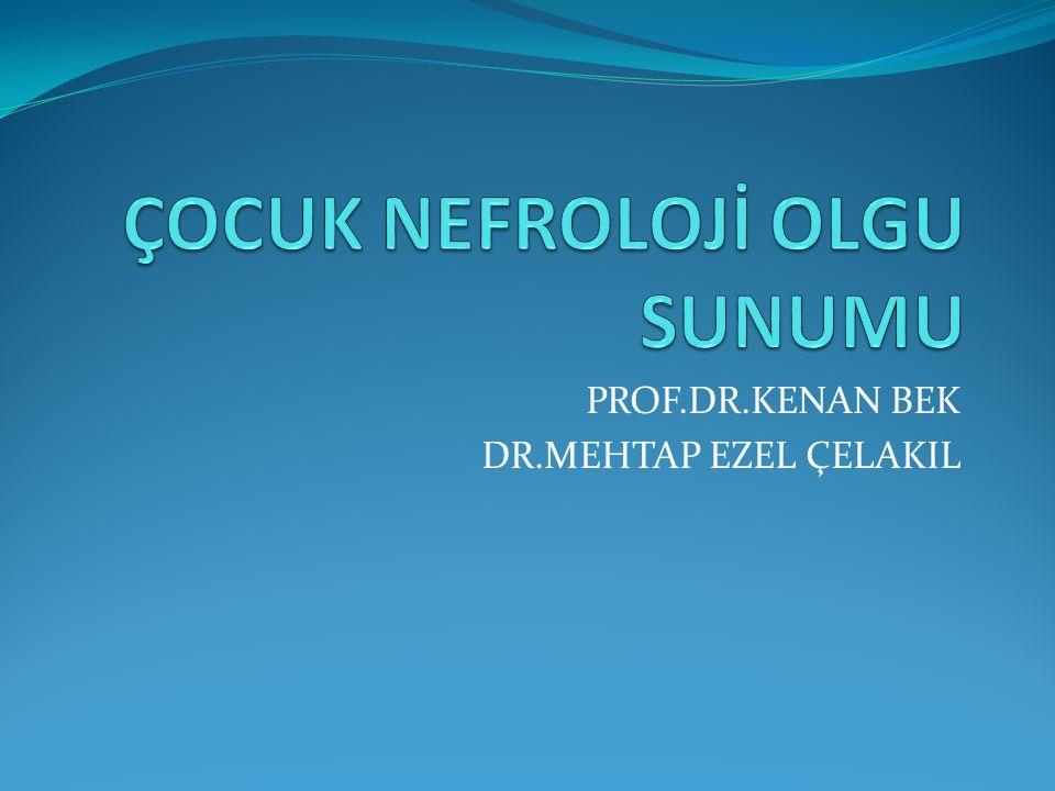 PROF.DR.KENAN BEK DR.MEHTAP EZEL ÇELAKIL