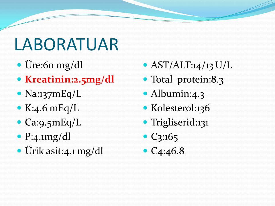 LABORATUAR Üre:60 mg/dl Kreatinin:2.5mg/dl Na:137mEq/L K:4.6 mEq/L Ca:9.5mEq/L P:4.1mg/dl Ürik asit:4.1 mg/dl AST/ALT:14/13 U/L Total protein:8.3 Albu