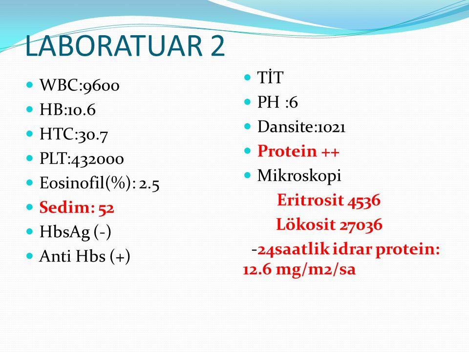 LABORATUAR 2 WBC:9600 HB:10.6 HTC:30.7 PLT:432000 Eosinofil(%): 2.5 Sedim: 52 HbsAg (-) Anti Hbs (+) TİT PH :6 Dansite:1021 Protein ++ Mikroskopi Erit