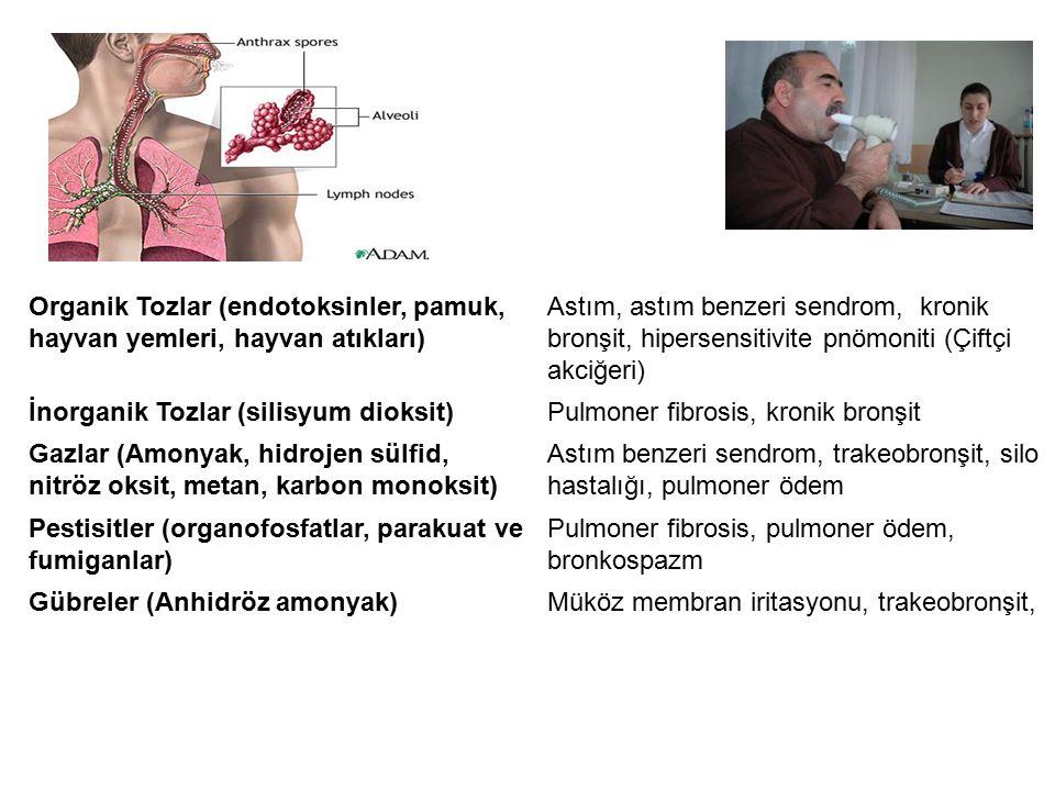 Akciğer Hastalıkları Organik Tozlar (endotoksinler, pamuk, hayvan yemleri, hayvan atıkları) Astım, astım benzeri sendrom, kronik bronşit, hipersensitivite pnömoniti (Çiftçi akciğeri) İnorganik Tozlar (silisyum dioksit)Pulmoner fibrosis, kronik bronşit Gazlar (Amonyak, hidrojen sülfid, nitröz oksit, metan, karbon monoksit) Astım benzeri sendrom, trakeobronşit, silo hastalığı, pulmoner ödem Pestisitler (organofosfatlar, parakuat ve fumiganlar) Pulmoner fibrosis, pulmoner ödem, bronkospazm Gübreler (Anhidröz amonyak)Müköz membran iritasyonu, trakeobronşit,
