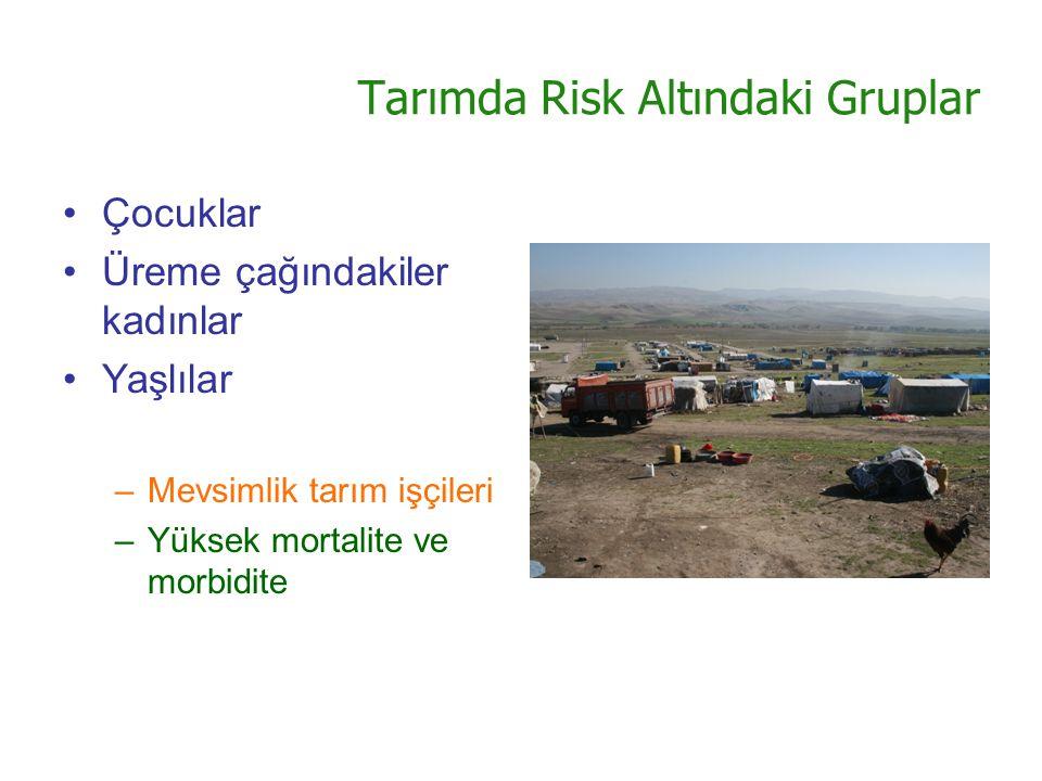 Tarımda Risk Altındaki Gruplar Çocuklar Üreme çağındakiler kadınlar Yaşlılar –Mevsimlik tarım işçileri –Yüksek mortalite ve morbidite