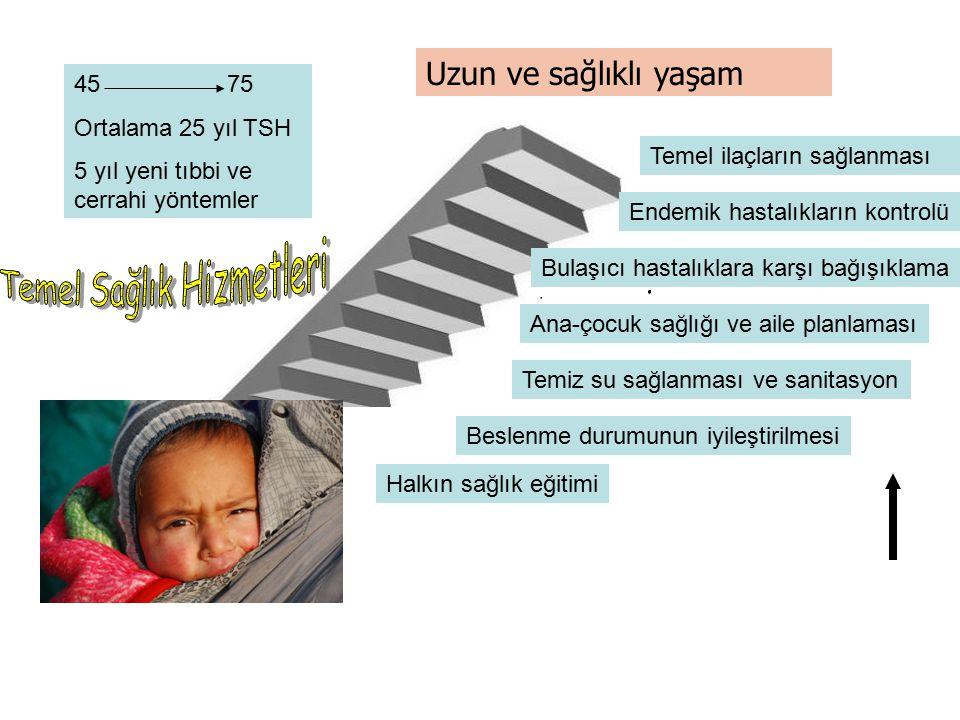 Binyıl Kalkınma Hedefleri Hedef 1: Mutlak Yoksulluk ve Açlığı Ortadan Kaldırmak, Hedef 2: Herkesin Temel Eğitim Almasını Sağlamak, Hedef 3: Kadınların Konumunu Güçlendirmek ve Toplumsal Cinsiyet Eşitliğini Geliştirmek, Hedef 4: Çocuk Ölümlerini Azaltmak, Hedef 5: Anne Sağlığını İyileştirmek, Hedef 6: HIV/AIDS, Sıtma ve Diğer Salgın Hastalıklarla Mücadele Etmek, Hedef 7: Çevresel Sürdürülebilirliğin Sağlanması, Hedef 8: Kalkınma için Küresel Ortaklıklar Geliştirmek,