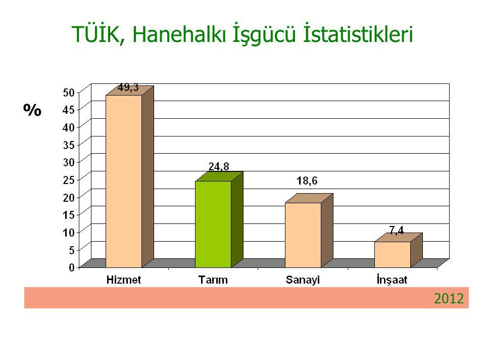 TÜİK, Hanehalkı İşgücü İstatistikleri % 2012