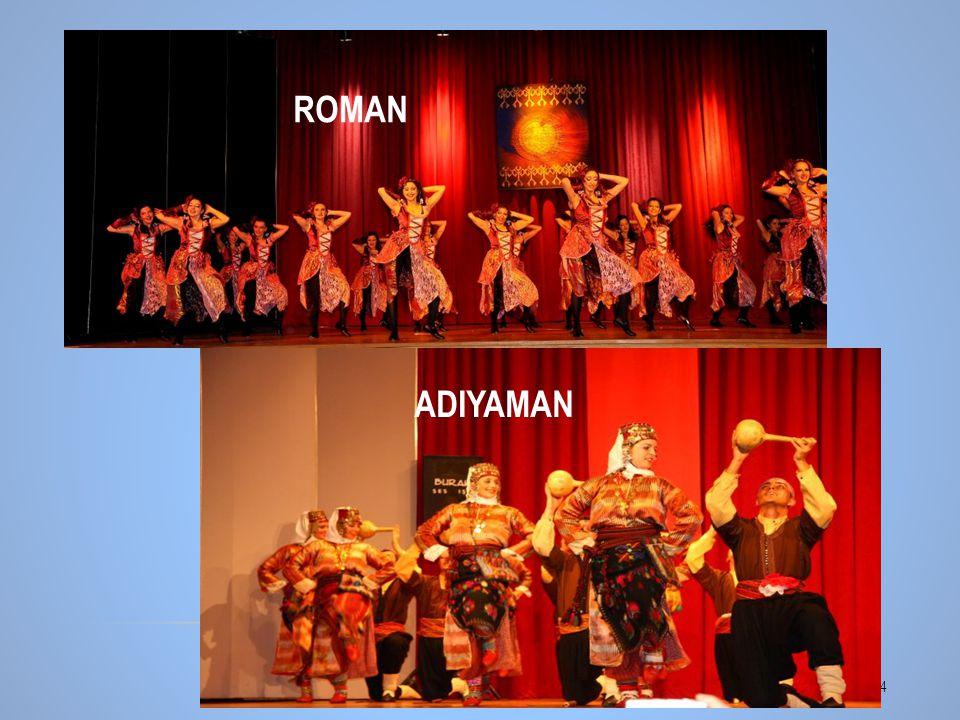 14 ROMAN ADIYAMAN