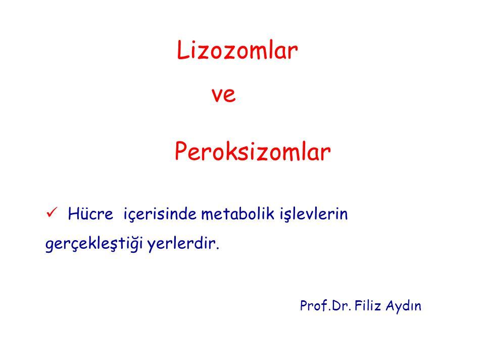 Hücre içerisinde metabolik işlevlerin gerçekleştiği yerlerdir. Prof.Dr. Filiz Aydın Lizozomlar ve Peroksizomlar
