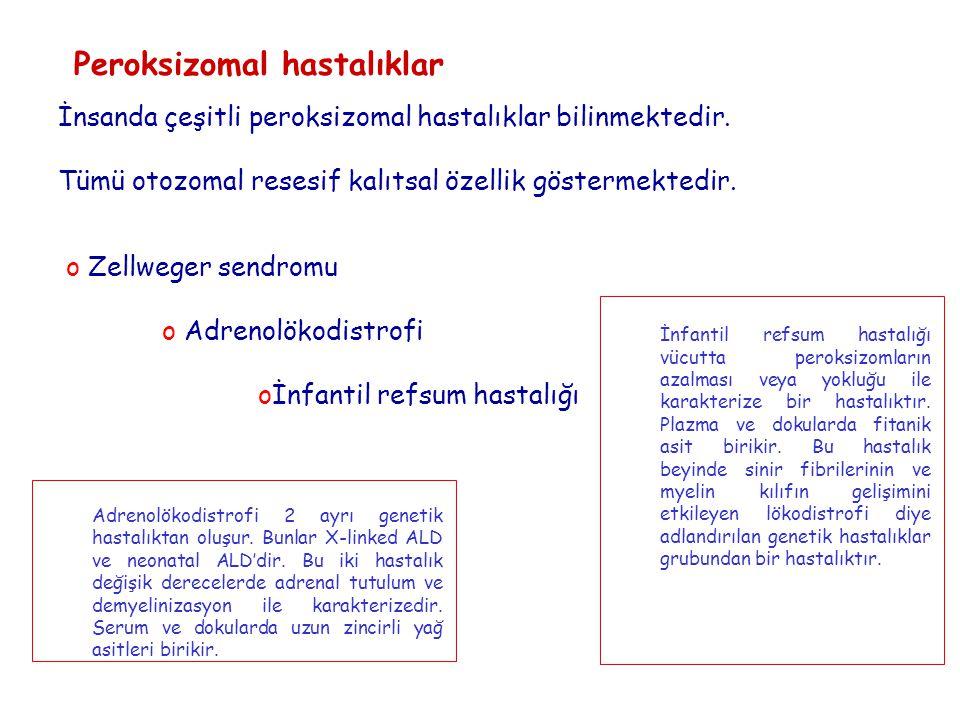 Peroksizomal hastalıklar İnsanda çeşitli peroksizomal hastalıklar bilinmektedir.