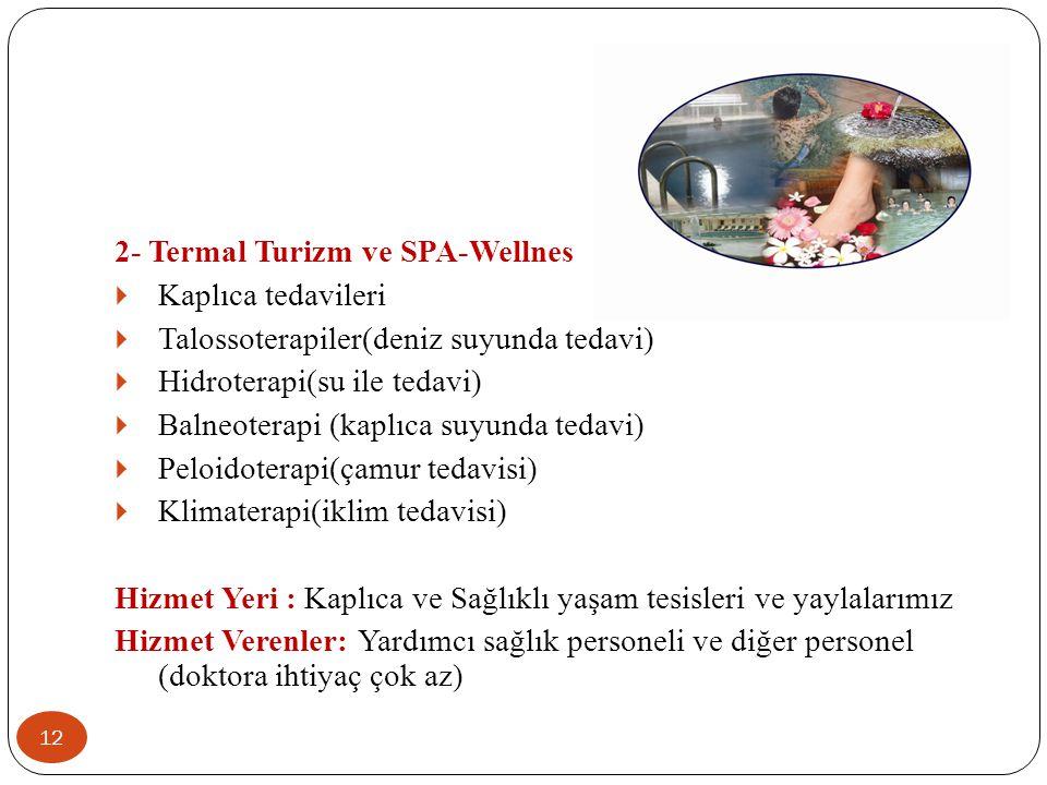 12 2- Termal Turizm ve SPA-Wellnes  Kaplıca tedavileri  Talossoterapiler(deniz suyunda tedavi)  Hidroterapi(su ile tedavi)  Balneoterapi (kaplıca