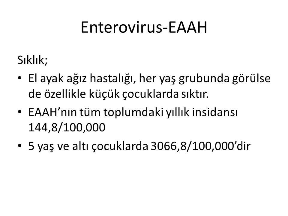 Enterovirus-EAAH Sıklık; El ayak ağız hastalığı, her yaş grubunda görülse de özellikle küçük çocuklarda sıktır. EAAH'nın tüm toplumdaki yıllık insidan