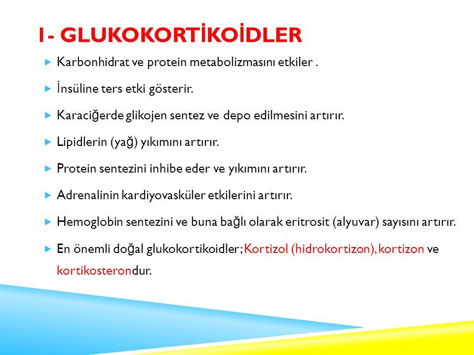 1- GLUKOKORT İ KO İ DLER  Karbonhidrat ve protein metabolizmasını etkiler.