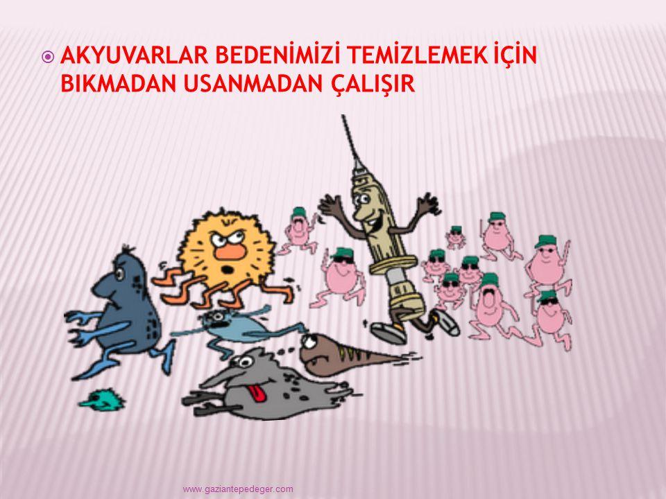 TEM İ ZL İ K MEMURLARI www.gaziantepedeger.com  GÖZKAPAKLARI GÖZÜMÜZÜ,  NEFES, KANIMIZI temizler
