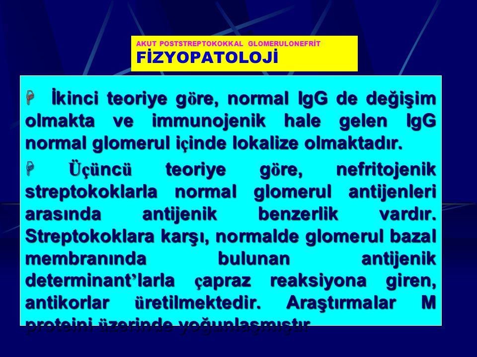AKUT POSTSTREPTOKOKKAL GLOMERULONEFRİT FİZYOPATOLOJİ  İkinci teoriye g ö re, normal IgG de değişim olmakta ve immunojenik hale gelen IgG normal glome