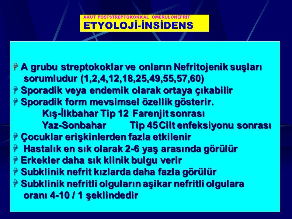 AKUT POSTSTREPTOKOKKAL OMERULONEFRİT ETYOLOJİ-İNSİDENS  A grubu streptokoklar ve onların Nefritojenik suşları sorumludur (1,2,4,12,18,25,49,55,57,60)